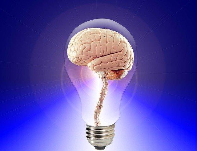 كيف تجعل ذاكرتك قوية بتمارين بسيطة.