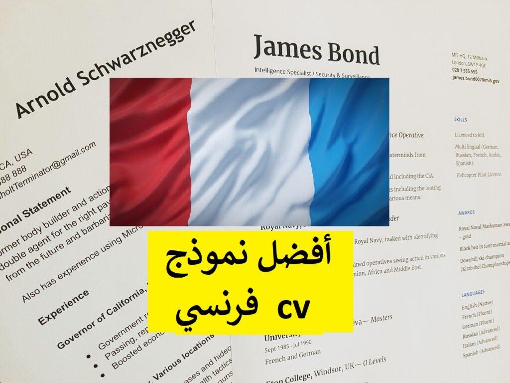 نموذج سيرة ذاتية باللغة الفرنسية + تحميل ملف وورد cv فرنسي قابل للتعديل